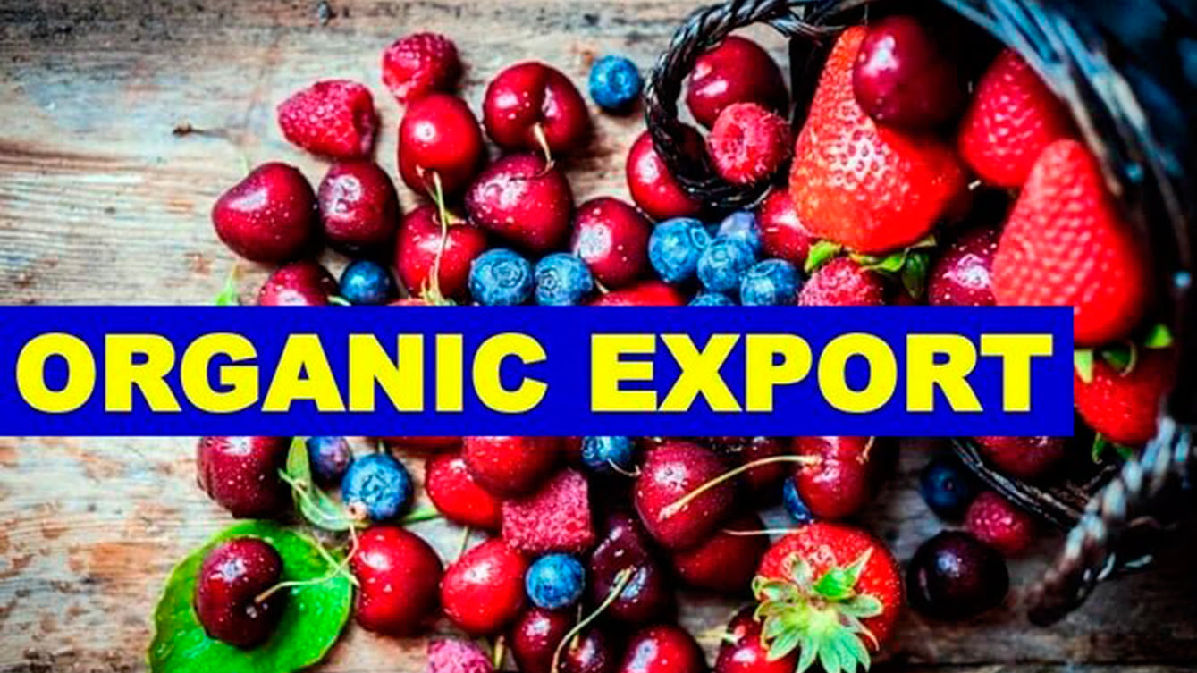 """Online training """"Export of organic products in the conditions of COVID -19"""""""